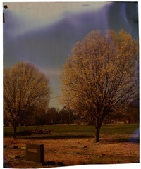 oakridge at steen, (from the mississippi series) by john chiara