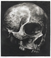 study of skull by robert longo