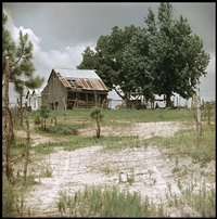 untitled, shady grove, alabama by gordon parks