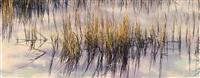 marsh grass at sunrise, south carolina by christopher burkett