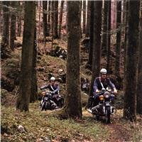 kernwald by arnold odermatt