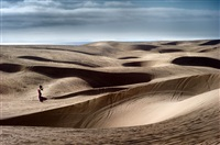 dune love by david drebin