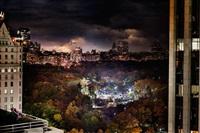 love in new york by david drebin