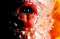 raspberry by marilyn minter