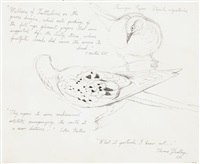 study for passenger pigeons by walton ford